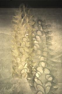 Asawa-10