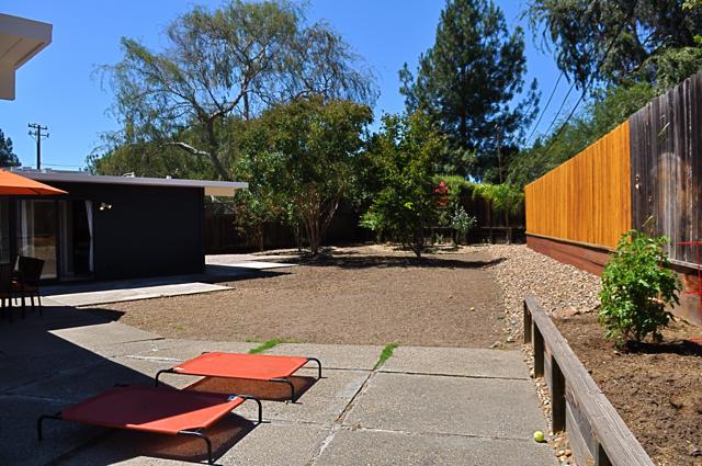 Blog-backyard3