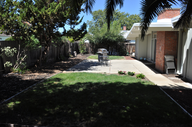 Blog-backyard2