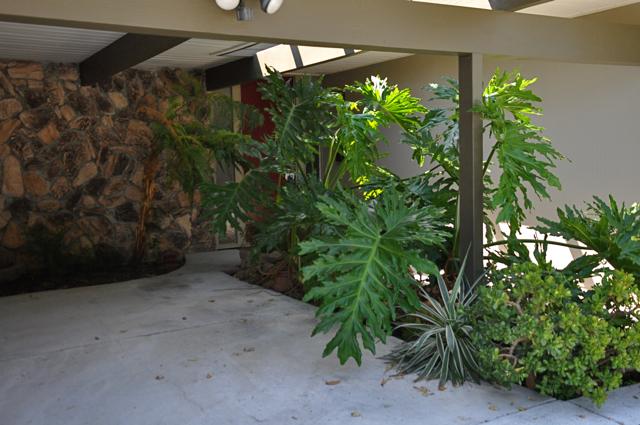 Blog-carport