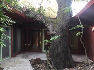 Blog-51-side-atrium