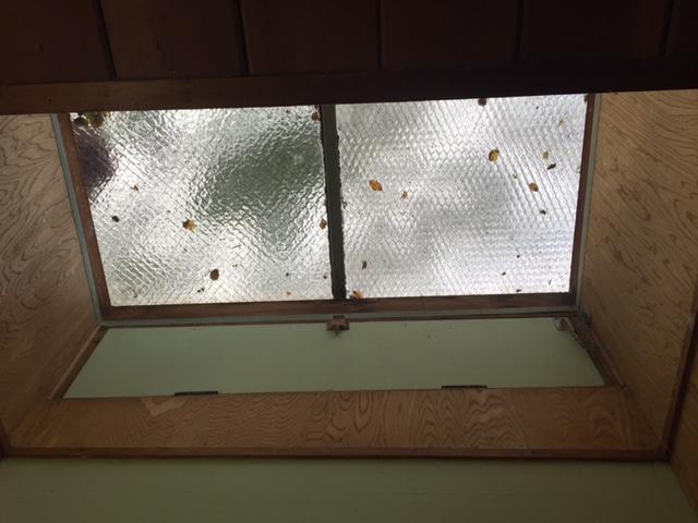 Blog-51-bathroom-skylight
