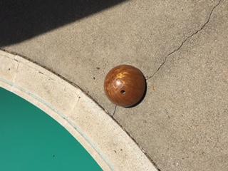 Phoenixpoolballs